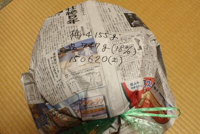 umeboshi0621 (11)