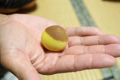 umeboshi0621 (9)